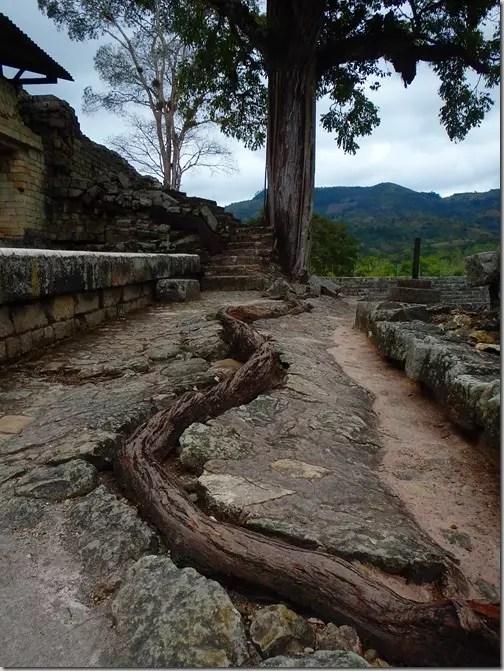 Copan Ruin Ruinas Honduras 12