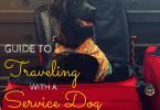 travelingwithaservicedogpostercropped