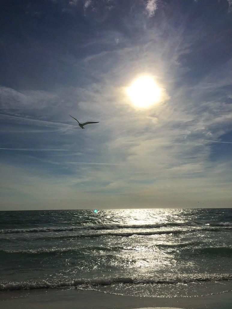 View of the ocean from Siesta Key wheelchair accessible beach near Sarasota, Florida,