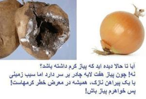 Hijab propaganda Iran Afghanistan Iranian Government