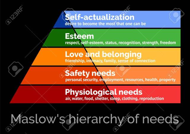 Maslow's Hierarch of Needs (5 levels)