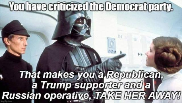 You have criticized the Democratic Party. That makes your a Trumps supporter and a Russian operative. Take her away!