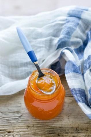 marmellata-di-melone-7