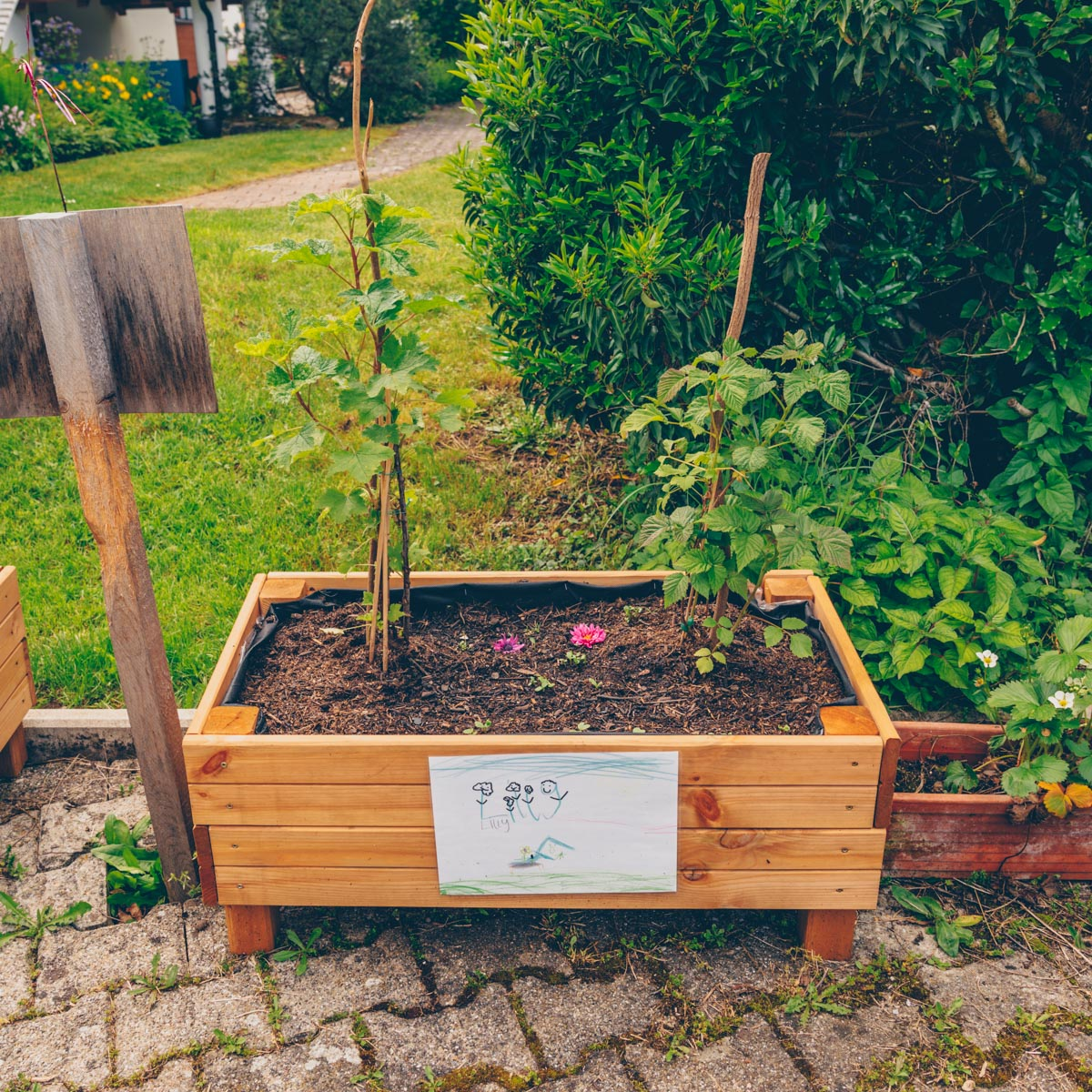 Urbanes Gärtnern mit Kindern