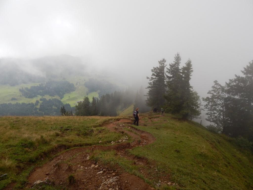 Allgäuer Alpen : Luftiger Grat - Falkenhütte - Seelekopf - Stiegalpe