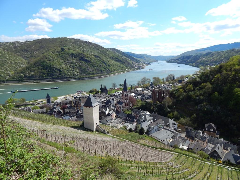 Stahlberg-Schleife Bacharach Rheinsteig Premium-Rundweg