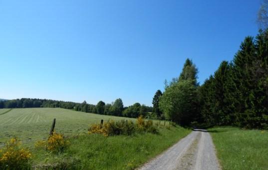 Jossataler Höhentour Mountainbike Roundtour im hessischen Spessart
