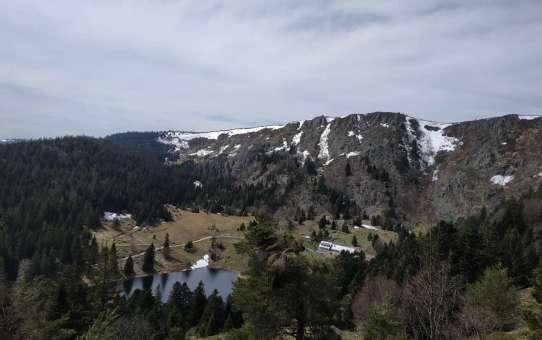 Wanderung Südvogesen – Lac Vert, Lac des Truites, Gazon du Faing