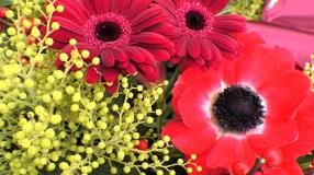 Blumen für Christian