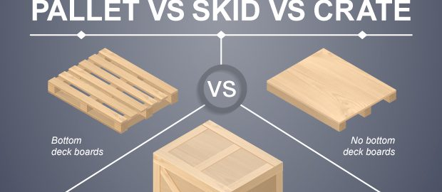 Pallet Vs Skid Vs Crate Infographic Freightera Blog