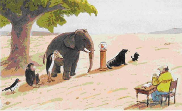 Schule_der_Tiere