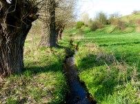 Fluß im Naturschutzgebiet