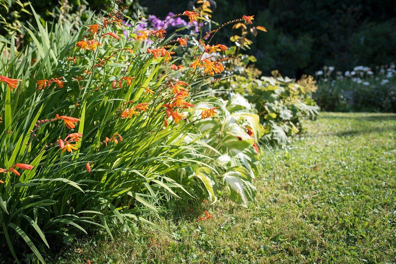 Gartenarbeit Im Frühling ? Freizeitfoto Die Gartenarbeit Im Fruhling
