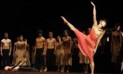 海外マルセイユバレエならプライベートオーディションはどう?