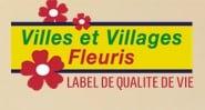 VVF logo