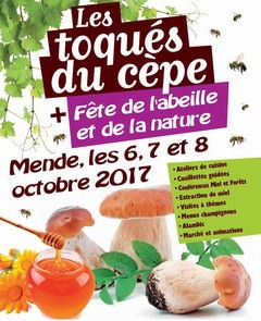 poster Mende Mushroom Festival
