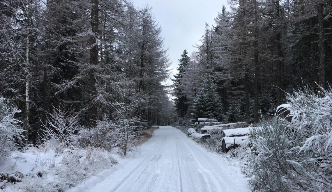 neige écosse
