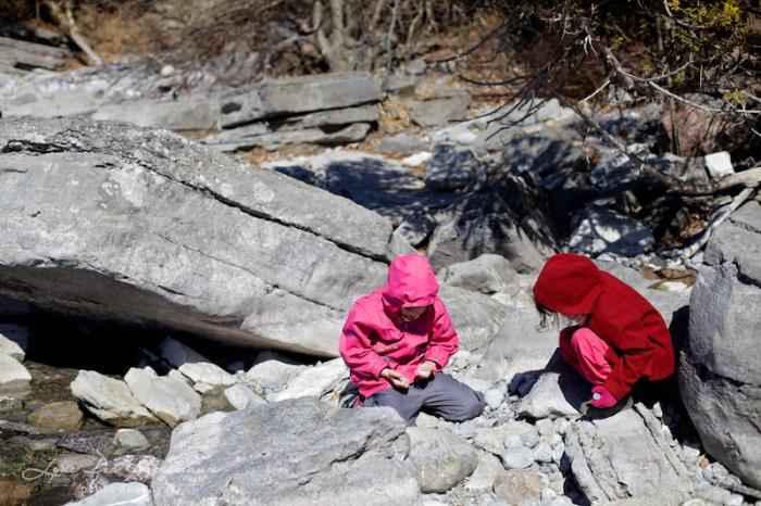 Une plage de roc