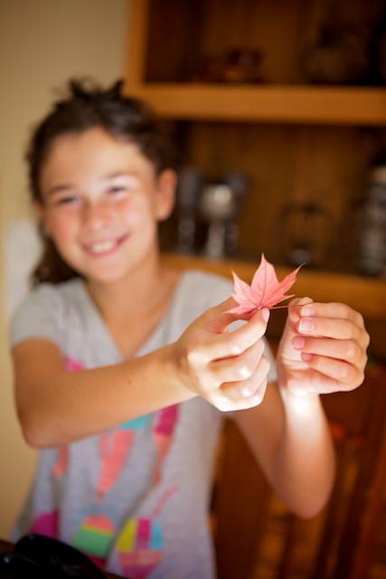 Bricolage avec feuilles d'automne