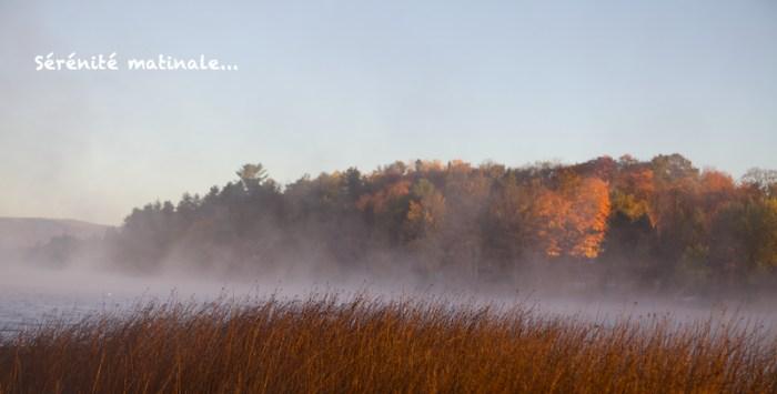 Lac noir un matin d'automne