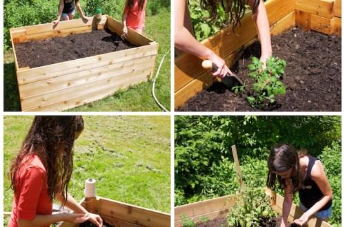 Premier jardin