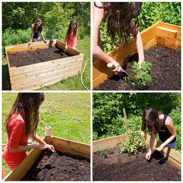 Notre premier jardin