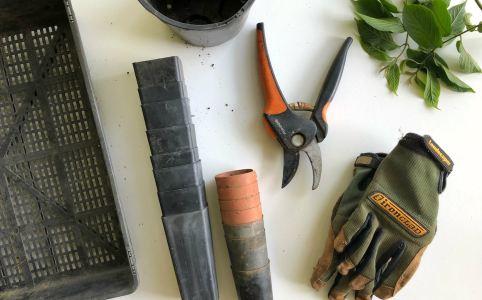 Outils de jardinage