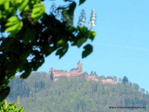 séjour printanier en Alsace : Haut-Kœnigsbourg © French Moments