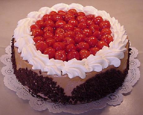 Choc Mousse Cake - Frozen Molded Category