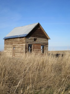 The old tin roof.