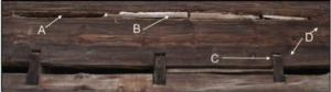 Fig. 2 : In this detail from the northeast wall, note the bark of Pinus ponderosa (A); wood slivers held in place by mortar chinking (B); loft joist (C) ; and broad axe nicks in wood (D).