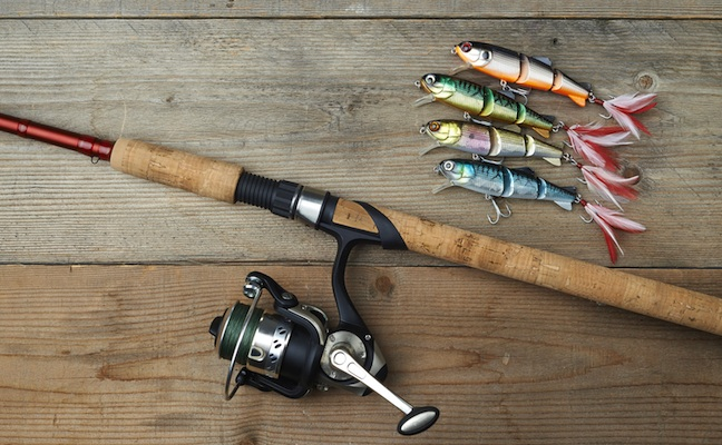 pêche-poisson-canne