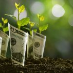 5 Steps to Achieve Sustainable Growth for Your Small Business