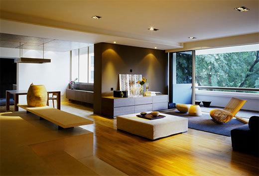 Apartment interior design idea