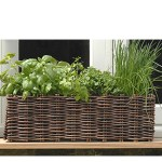 Window box plant and grow set