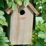 Get a bird nesting box