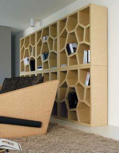 Designer bookcase for a modern home
