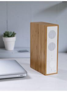 Bargain bluetooth home speaker