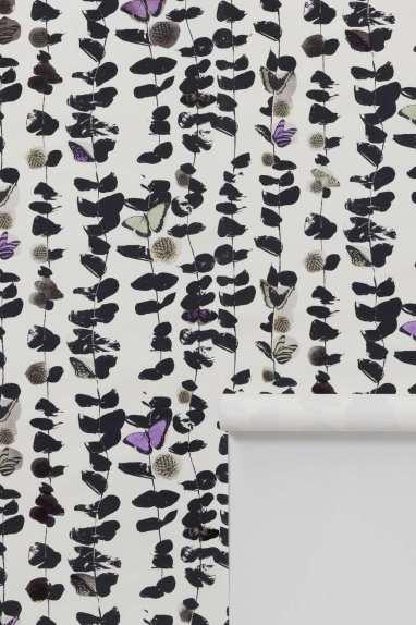 Hide and Seek butterfly wallpaper