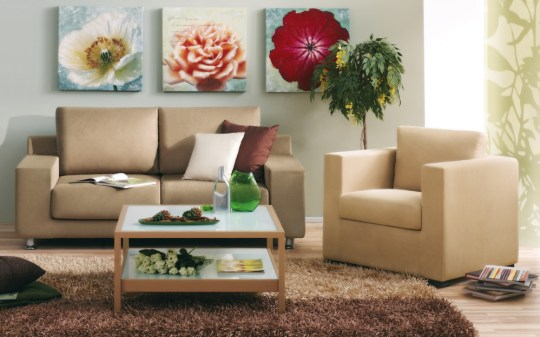 Small lounge decor ideas