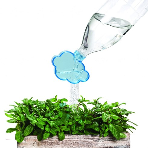 Recycle plaster bottles into plant watering cans