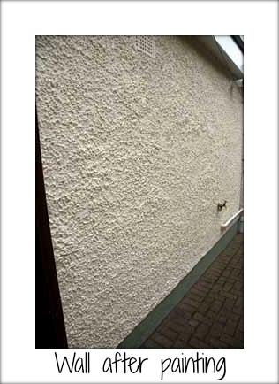 Fresh Design Blog review of exterior house paint