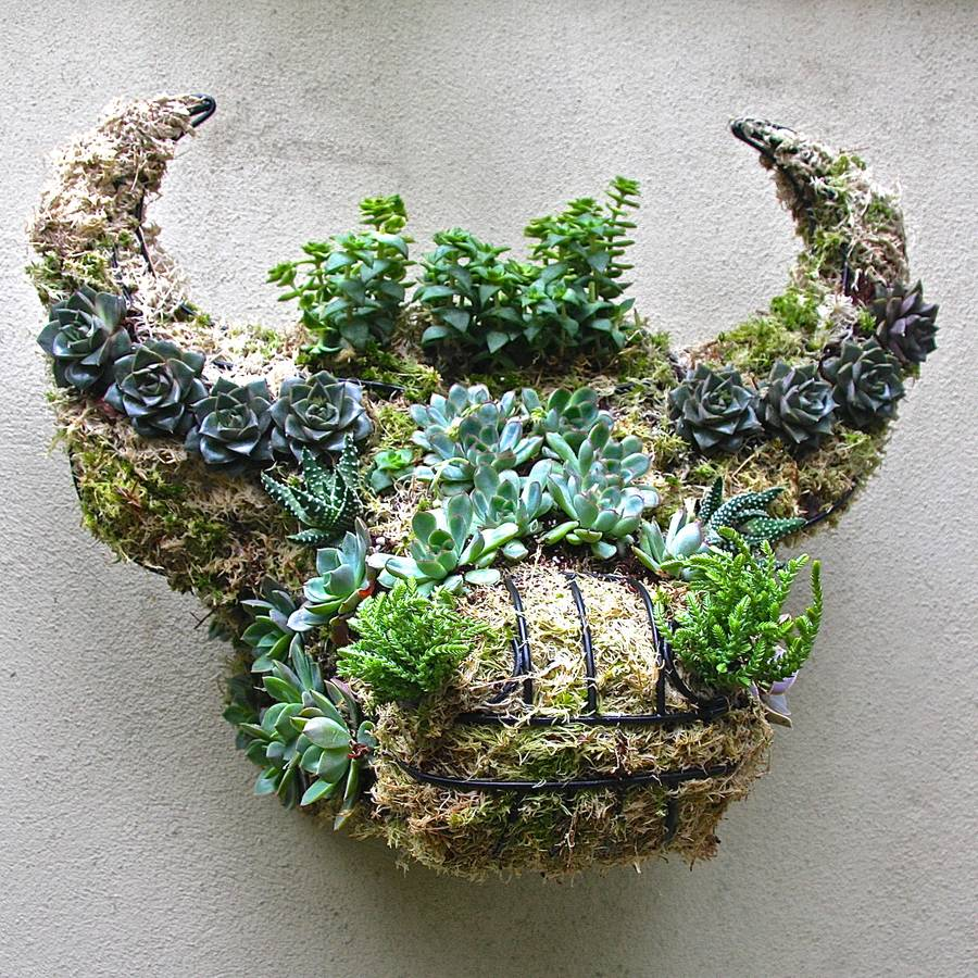 Garden ideas: Contemporary and quirky wall planters ~ Fresh Design Blog