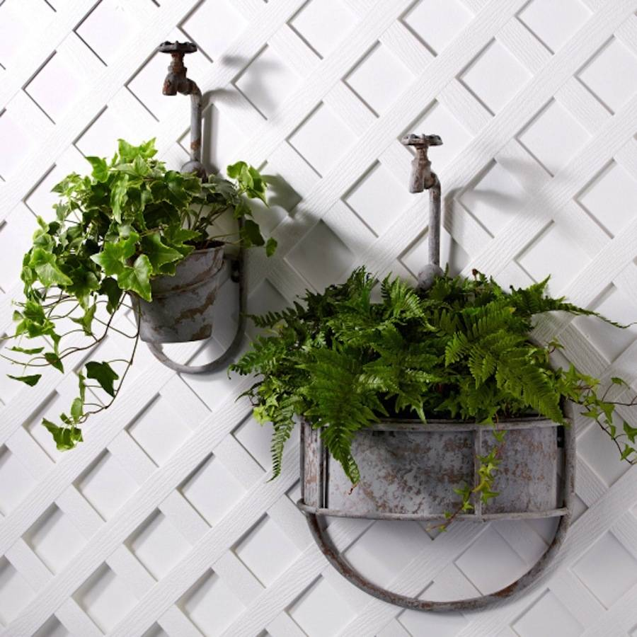 Garden ideas: Contemporary and quirky wall planters ~ Fresh Design on quirky animals, quirky art, quirky signs, quirky garden ideas,