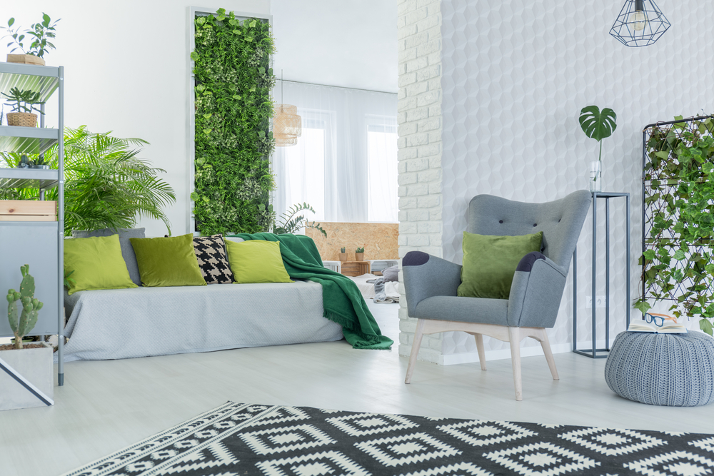 Keen to have plants in your home? Discover which plants work best in your home and make your environment a greener living space
