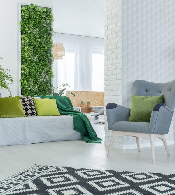 Bring nature indoors: low maintenance plants for your home
