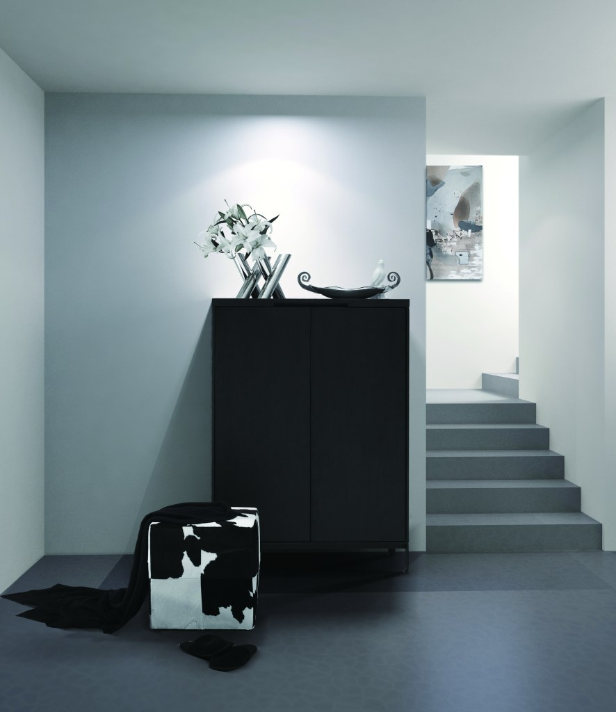 Luxurious Max storage unit from Camerich