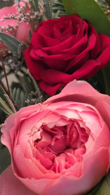 The roses in the Christmas posy are gorgeously scented