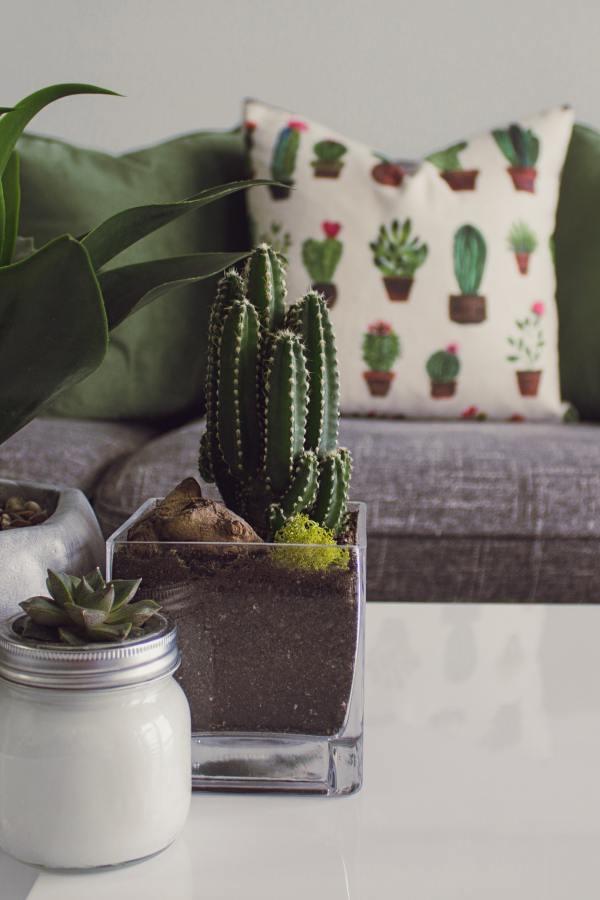 Fresh design ideas for little living rooms