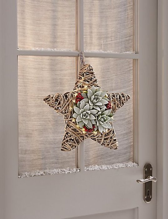Unusual way of displaying succulents - on a wicker star Christmas wreath